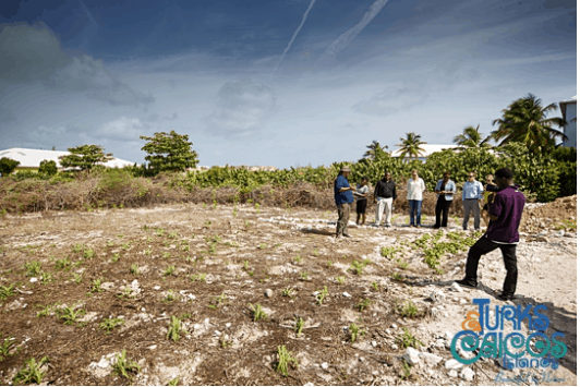 Bryan Naqqi Manco from Department of Environment and Martime Affairs guides visitors around the garden during its official opening; Copyright: Turks and Caicos Tourist Board