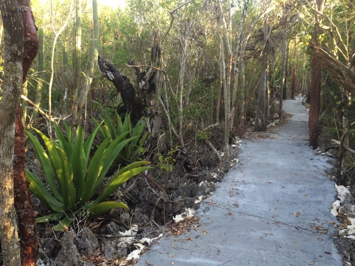 Walk through the new protected area at Colliers; Copyright: Ann Stafford