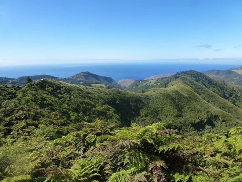 View from Diana's Peak, St Helena. Copyright: Felix Driver