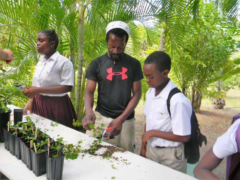 School open day at the Montserrat Botanic gardens; Copyright: Montserrat National Trust
