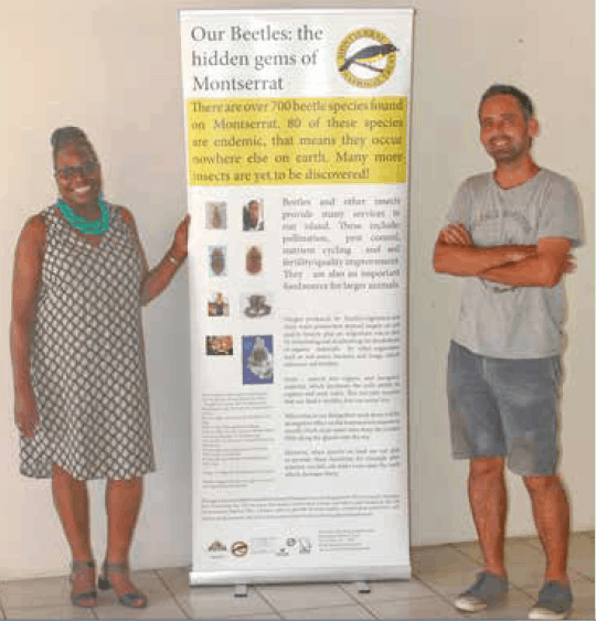 A poster produced which raises awareness of the importance of insects to Montserrat now displaying in the Montserrat National Trust office, here, with Jean White and Nicolas Tirard of MNT; Copyright: Dr Mike Pienkowski