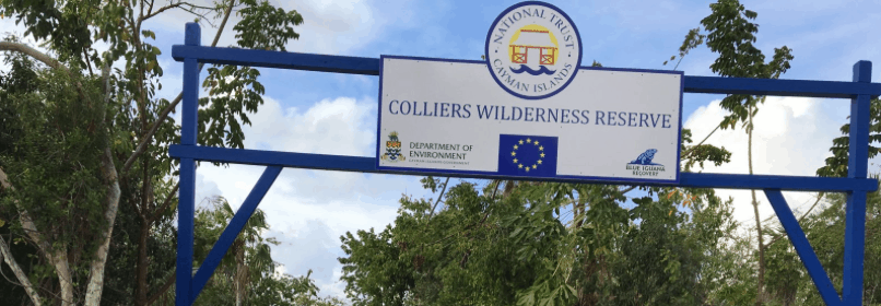 Colliers Wilderness Reserve