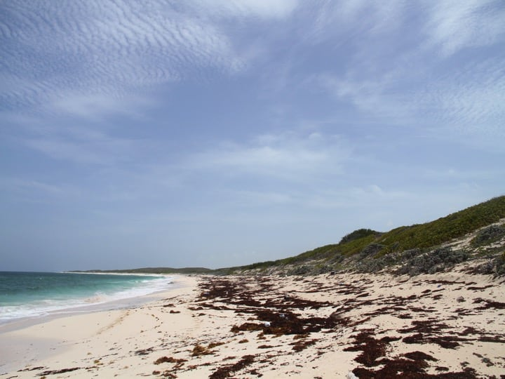 East Caicos coastline; Copyright: Kathleen McNary Wood