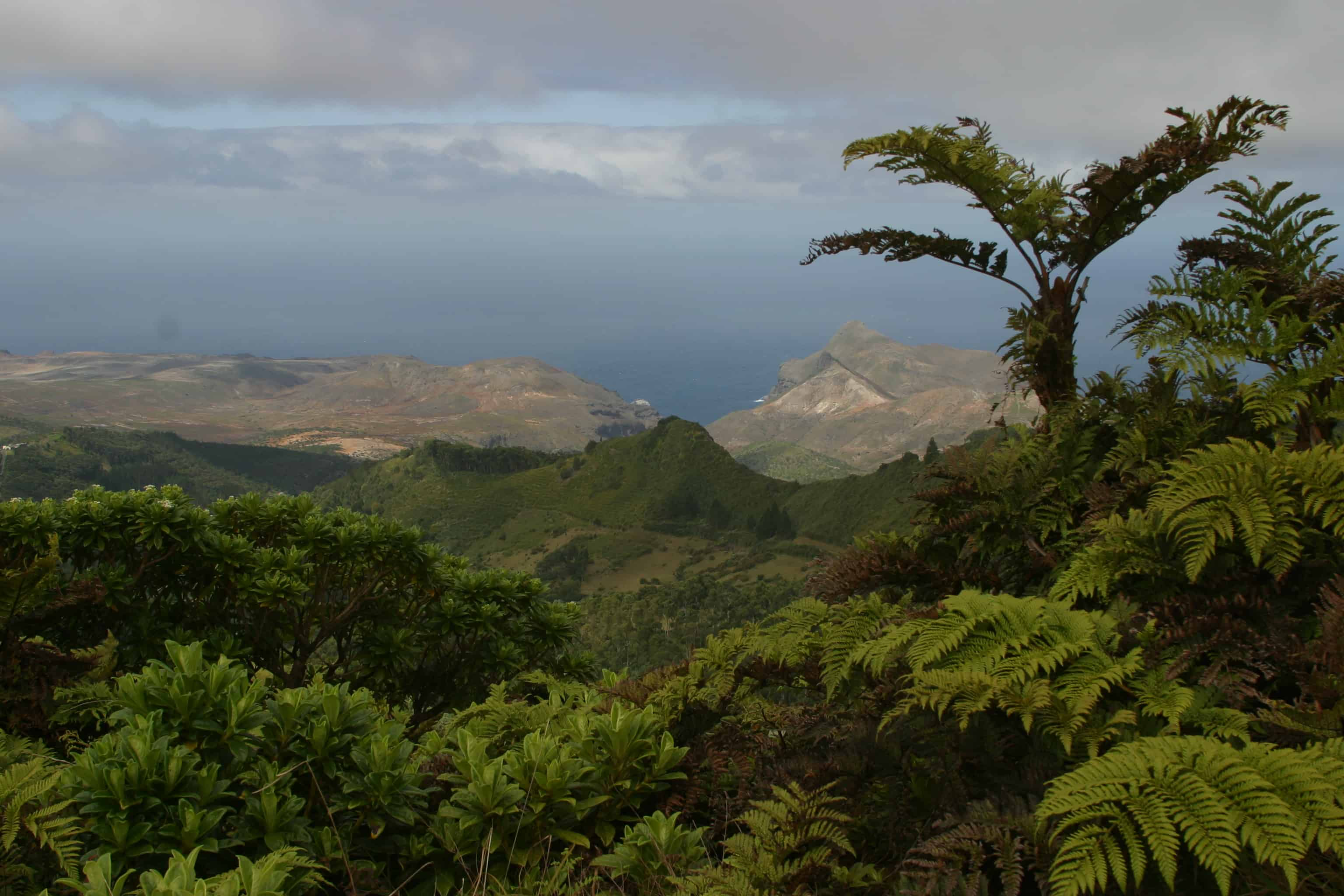 St Helena, viewed from cloud forest on the mountain, eastward to the desert. Copyright: Dr Mike Pienkowski