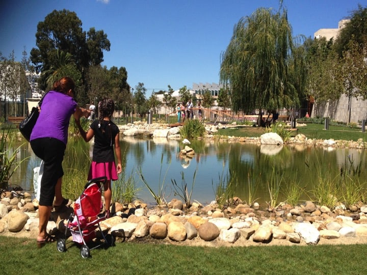 Commonwealth Park is the first public park opened since the Alameda botanical gardens opened in 1816. Copyright: HMGOG/GONHS