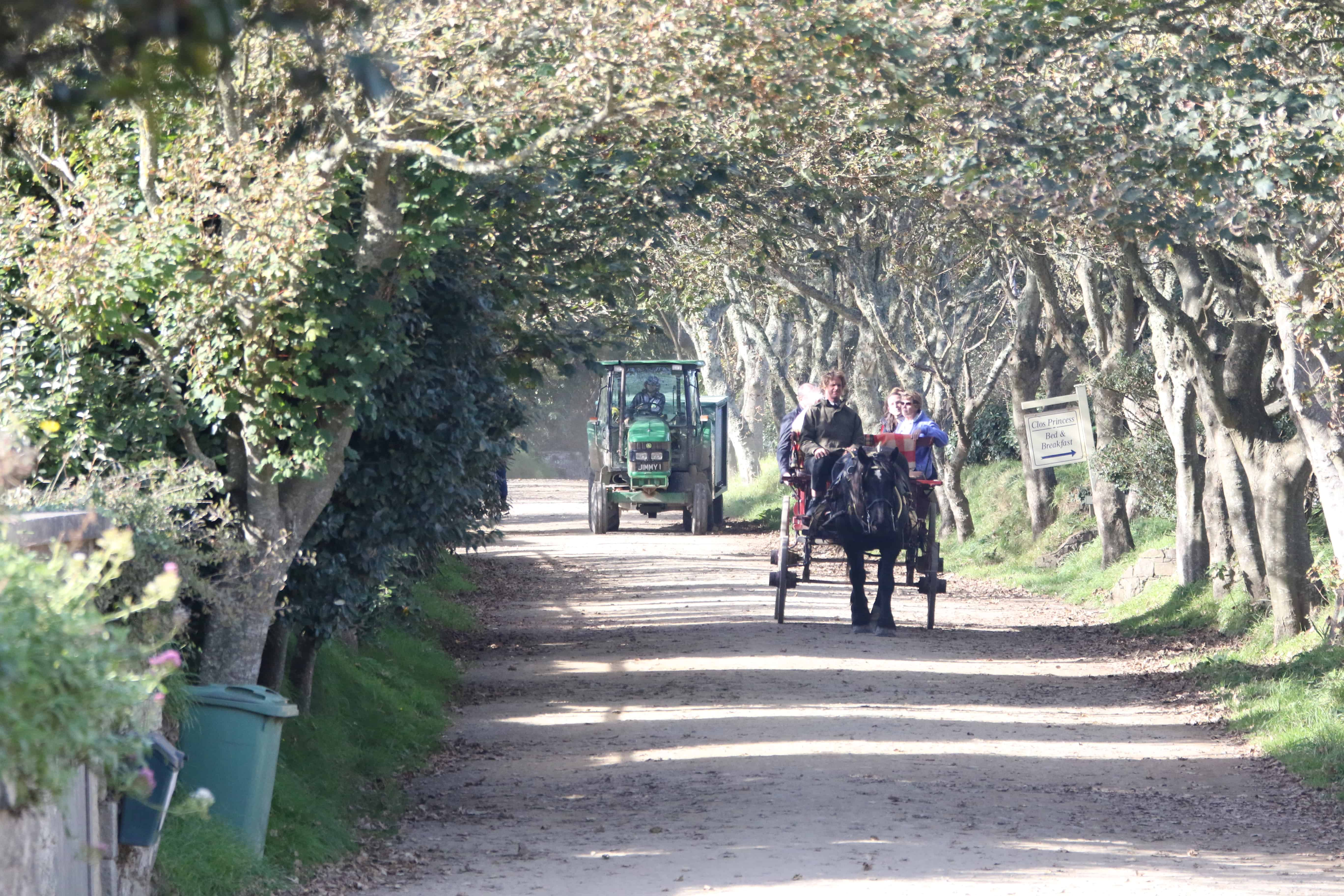 Horse-drawn carriage and agricultural tractor are the vehicles on Sark, as well as bicycles and feet. Copyright: Dr Mike Pienkowski