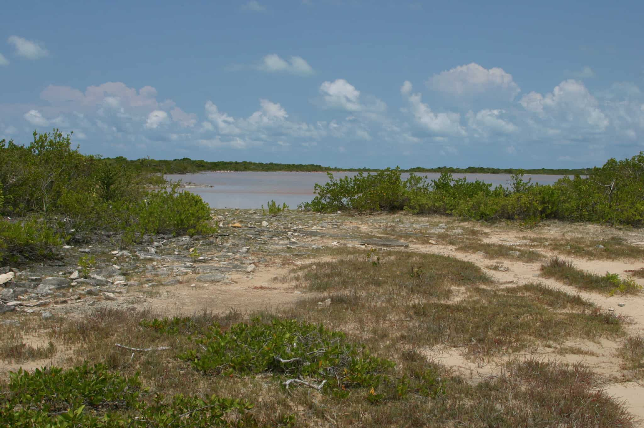 Ponds at Anegada. Copyright: Dr Mike Pienkowski