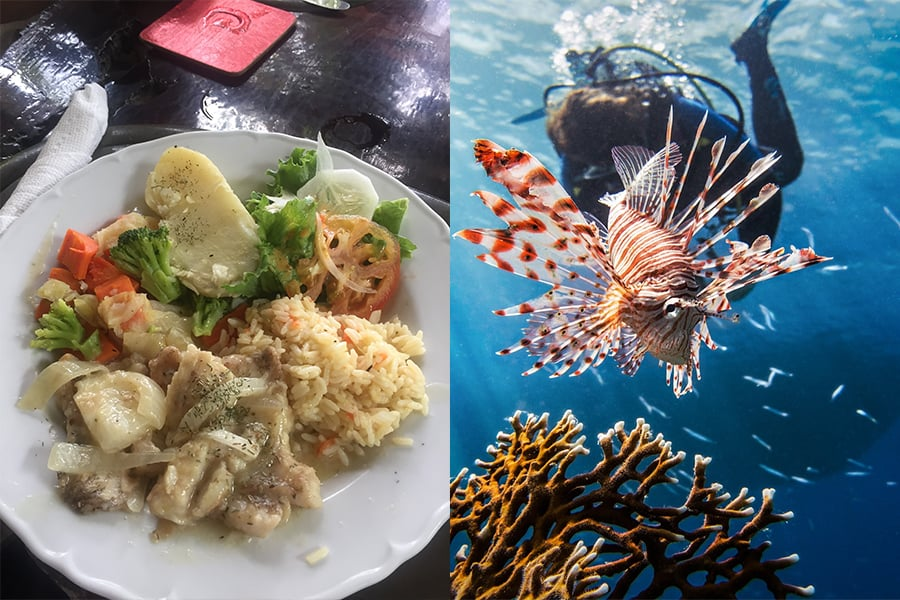 Left: Delicious meal of lionfish prepared at Ponteen's restaurant in Little Bay Montserrat; Copyright: UKOTCF; Right: Lionfish on a reef in its natural range