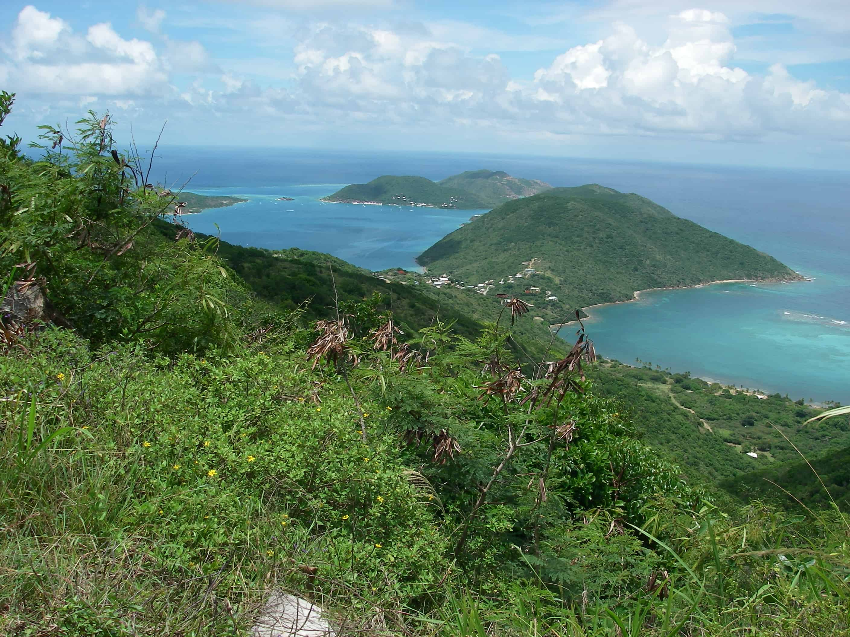 A view of Tortola from Sage Mountain National Park. Copyright: Dr Mike Pienkowski