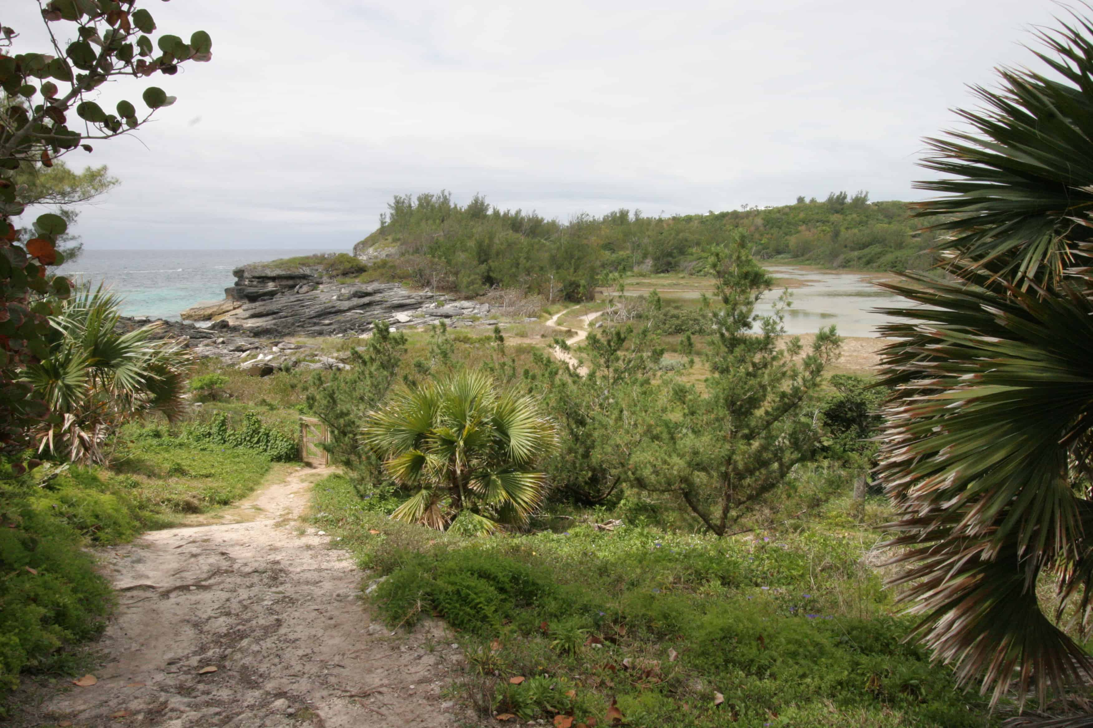 Spittal Pond (right), its Nature Reserve and the SE shore. Copyright: Dr Mike Pienkowski