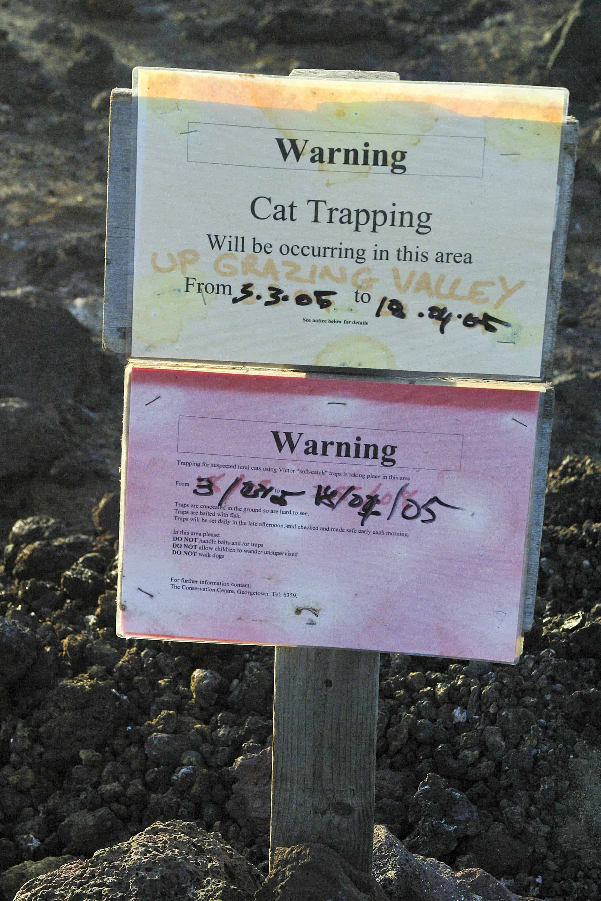 ign to inform public about planned trapping of feral cats on Ascension; Copyright: Dr Mike Pienkowski